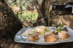 Degustazione olio Parco Piccolo