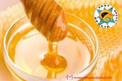 degustazione-miele